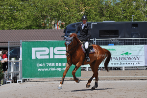 Show Jumping Stock 021 by Champi-Stock