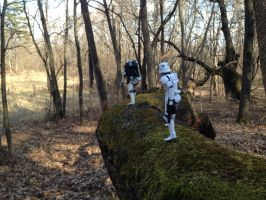 Storm Troopers on Mossy Log II by TheLittlestGiant