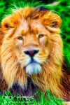 Asiatic Lion: Fractalius Re-Edit by nerdboy69