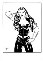 Donna Troy. by BlackLabelArt