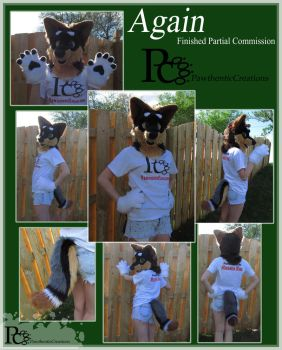 Again Partial Commission by PawthenticCreations