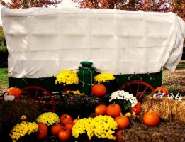 Covered Wagon by IntelligentZombie