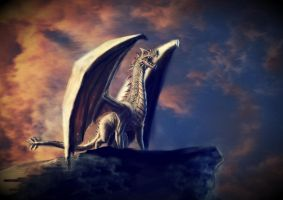 dragon on the afternoon by thevisualfreak