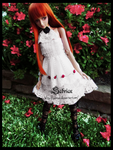 Lolita Style by lauritad