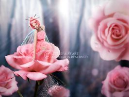 Rose by LittleFairyArt