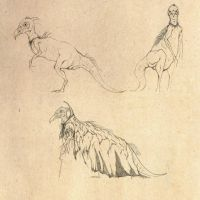 Skeksis Concepts by NyleLevi