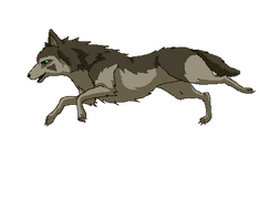 Running Wolf - animation by JeMiChi