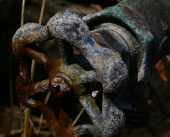 close up of watere valve by wolfmantruth
