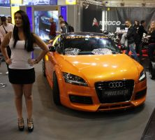 Audi TT and Tomason Girl by christiAnpure