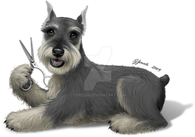 Schnauzer - Commission by ceres86