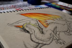 Dragon by RougeCerberus
