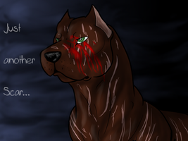 Just Another Scar... by Lelizadith