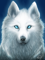 White spirit wolf by Kyo-chan12