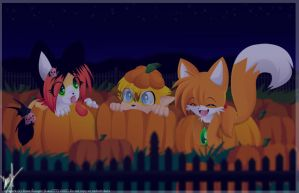 .::Pumpkin Field::. by luna777