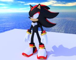 Shadow the hedgehog by Mikiel2171