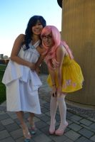 Bronies and Pegasistas by CelesteOrchid