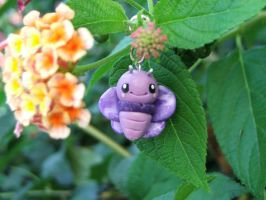 violet butterfly by Libellulina