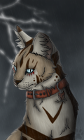 Calm in the Storm- gift by Alikrea