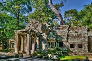 Ta  Prohm by CitizenFresh