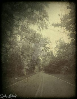 Old Southern Roads V by kittensclaws