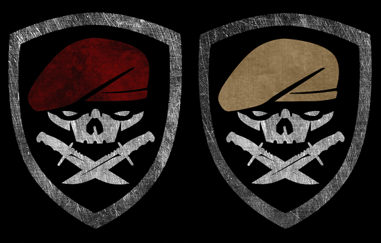 MOH 75th Ranger Patch Varia by DeFFik