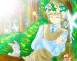 APH: UK - The king of fairies by Kannabie3