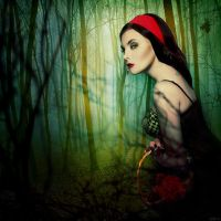 Little Red Riding Hood by bitterev