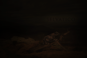 Selvatico by BV-Academy