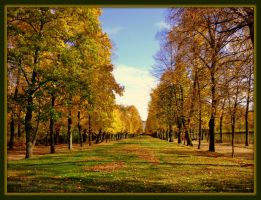 autumn in the parc by Mittelfranke