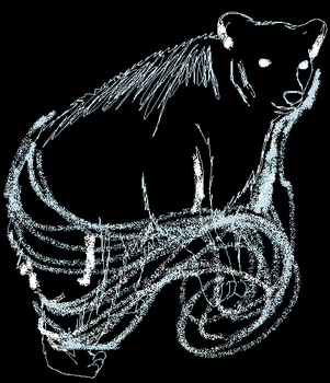 Bertram's patronus by Piratewarriorcat
