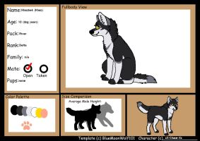 THE-WOLF-PACKS application by xX-Chase-Xx
