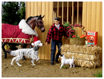 Breyer - Christmas Gifts by The-Toy-Chest