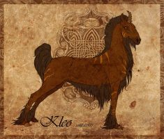 Kleo CARD by olllga81
