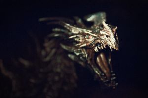 Alduin by FK-Photography