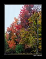 Colors of Autumn II by David-A-Wagner