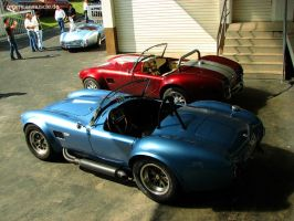 3x cobra by AmericanMuscle