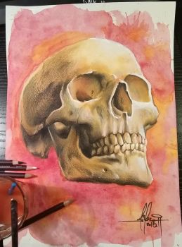 Skull painting by MiksArt