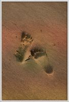 footprints in the sand by J-Payden