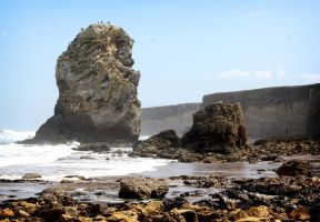 Marsden Remains by elliotbuttons