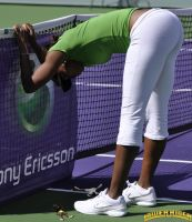 Venus Williams stretching by lowerrider