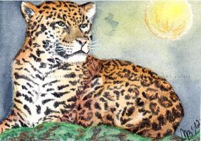 ATC #54 Jaguar by WitchiArt