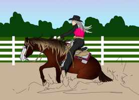 Cheese: On-Going Reining by Shining-Spurs-Ranch