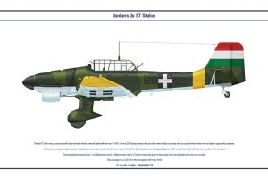 Ju 87 Hungary 2 by WS-Clave