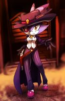 blaze the cat +kitty the kid+ by nancher