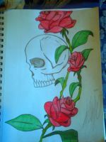 Skull and Roses Colored by m00nstonee