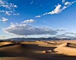 Sand Dunes Death Valley NP by arches123