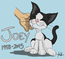 My cat Joey + Speed Drawing by zones-productions