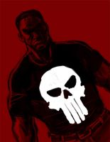 DSC 80 PUNISHER by robthesentinel