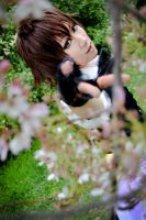 Hakuouki- through the blossoms by kitsunesqueak