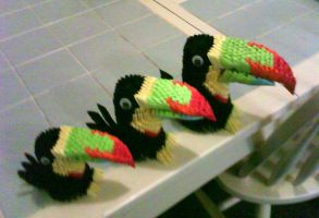 toucans by dfoosdc